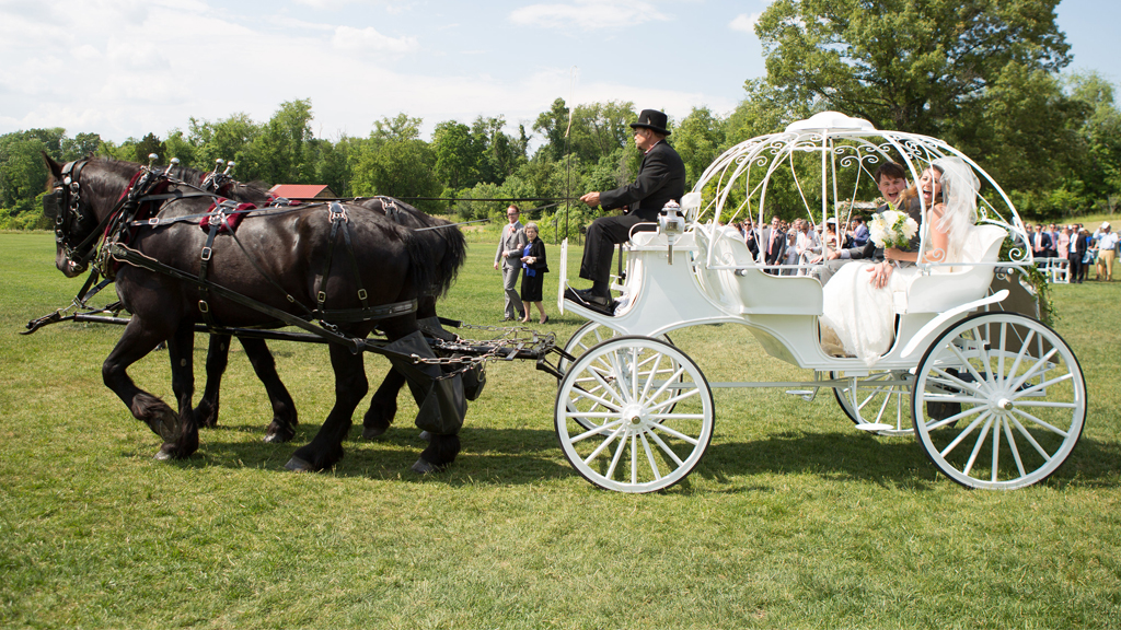 Cinderella Herself Would Be Jealous Of The Horse Drawn Carriage At