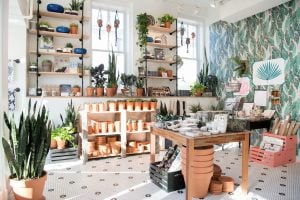 Take a Look Inside Little Leaf, Salt & Sundry's Insta-Perfect Sister Store