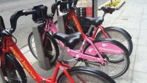 How to Find Capital Bikeshare's Pink Cherry Blossom Bike