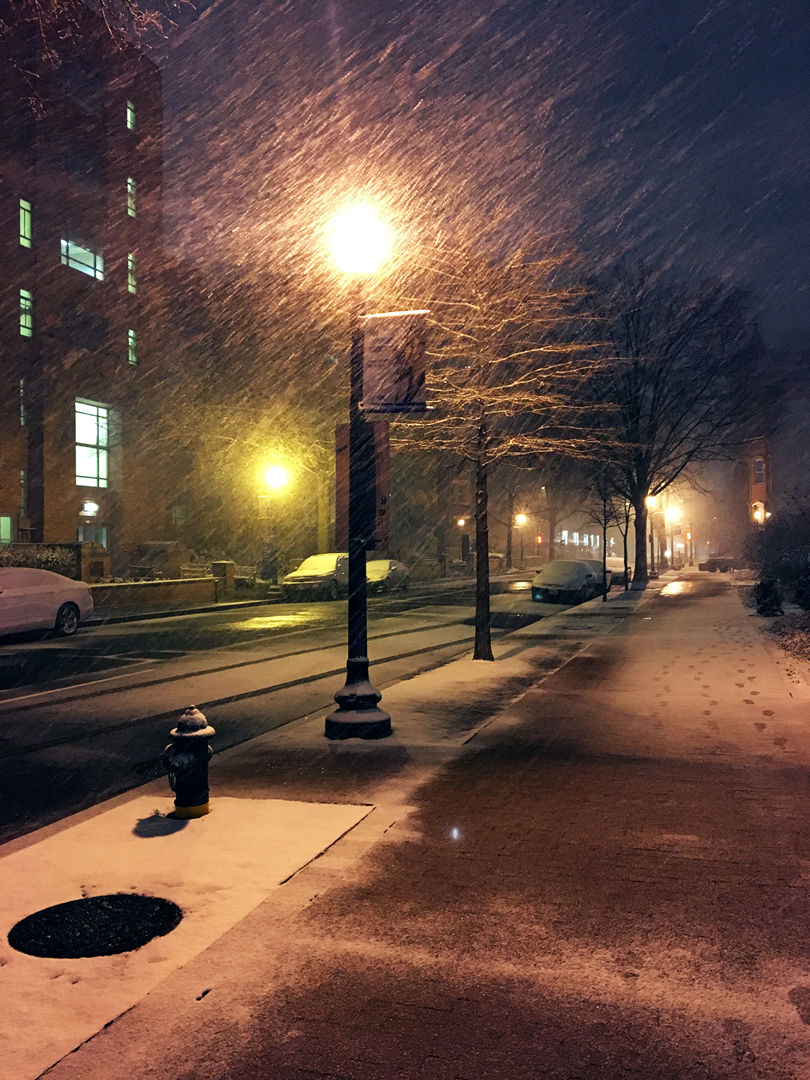 Snow coming down in Foggy Bottom. Photograph courtesy of Christina Witkowicki.