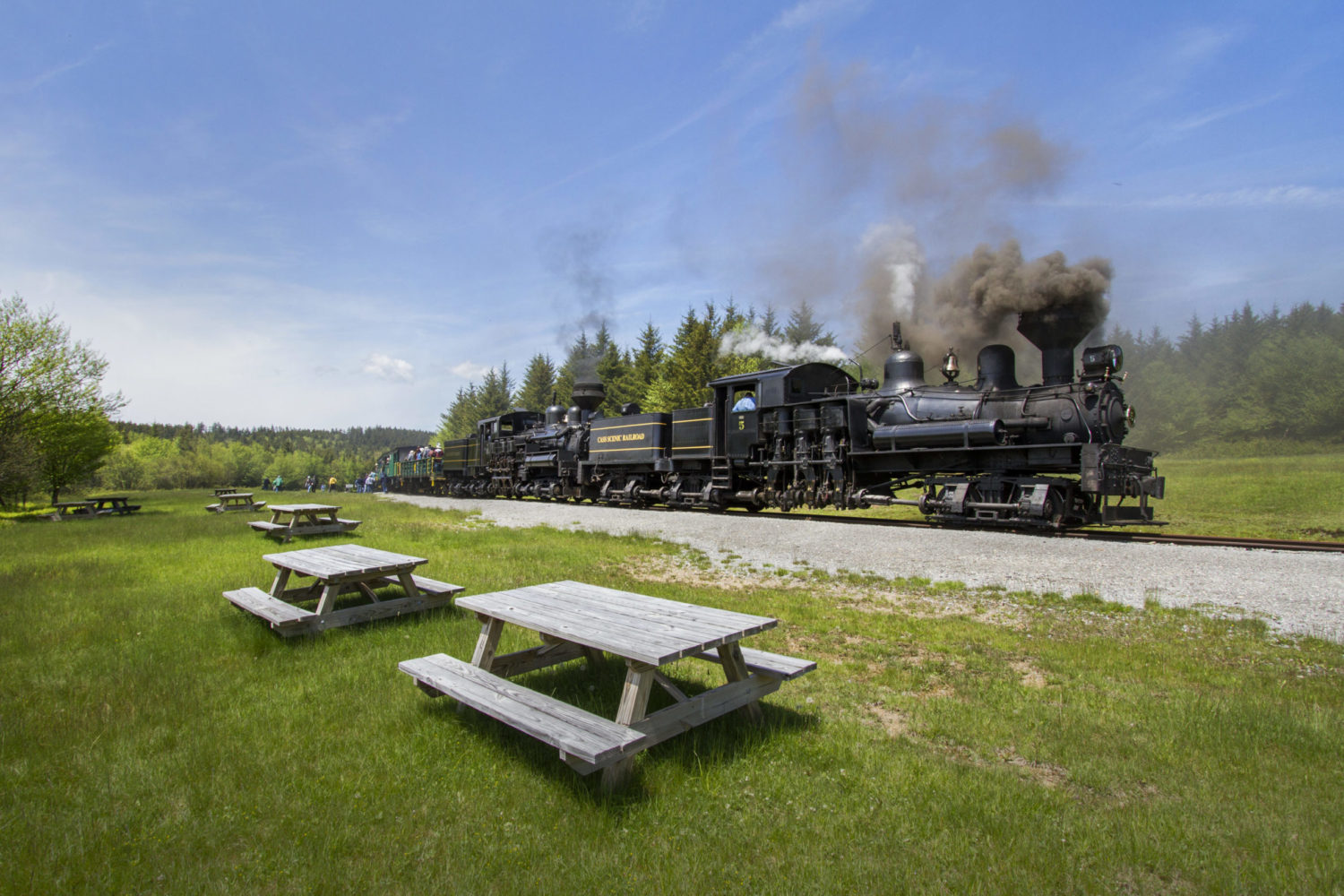 Celebrating 20 years of MountainRail Relaxation