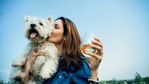Six Dog-Friendly Wineries Near DC