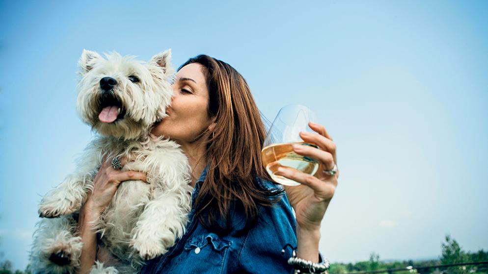 Big Cork Winery Dog Friendly