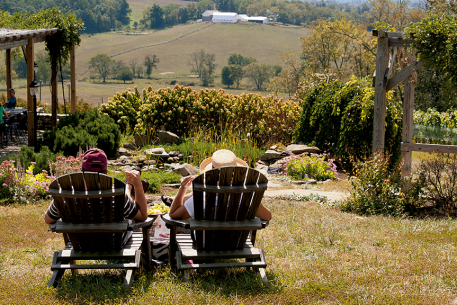 The Best Wineries on the Way to Harpers Ferry | Washingtonian