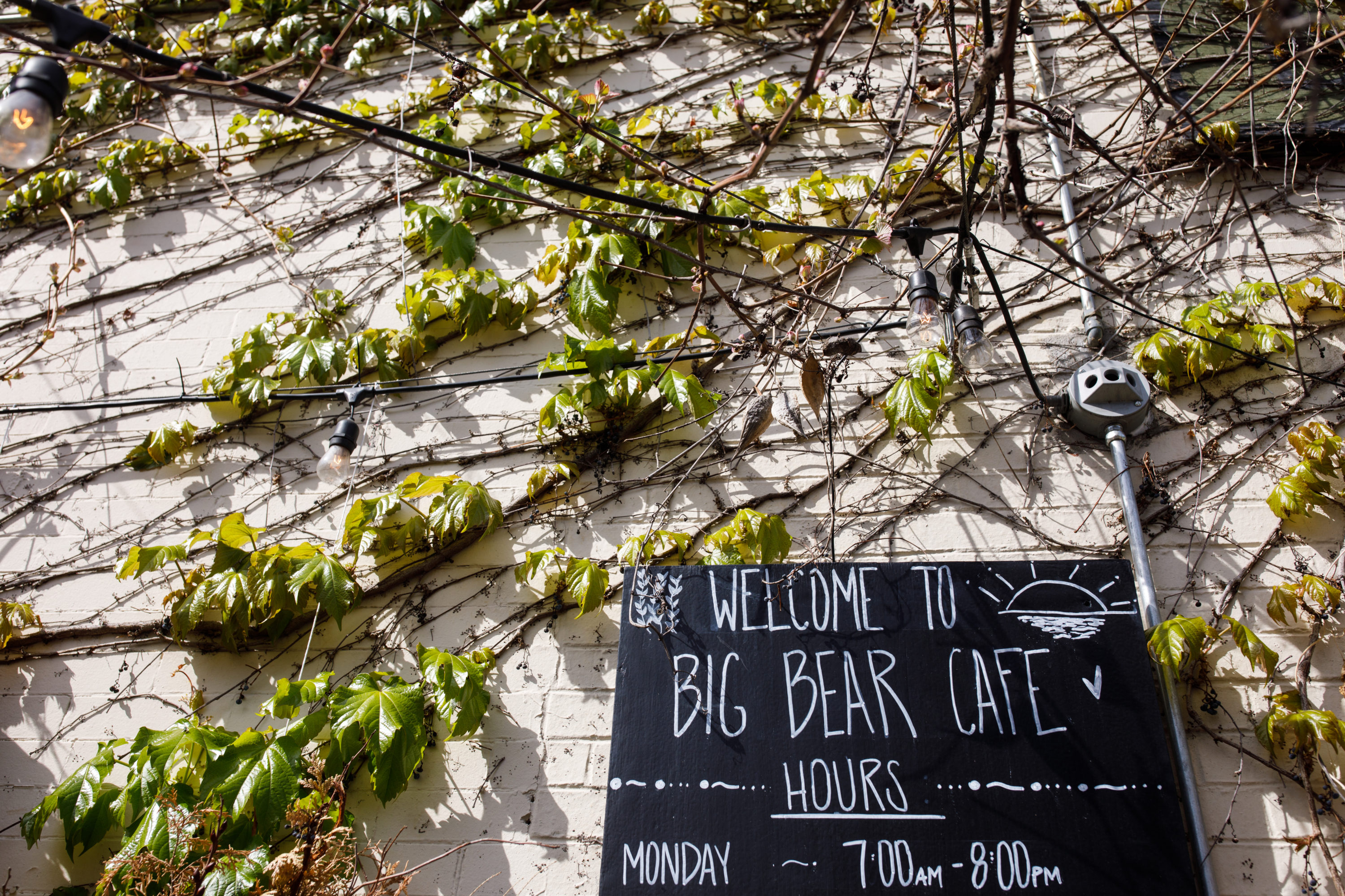 this big bear cafe wedding will make you wish you married at your