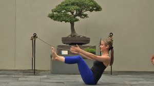 You Can Try Yoga Among the Bonsai Trees at National Arboretum This Summer