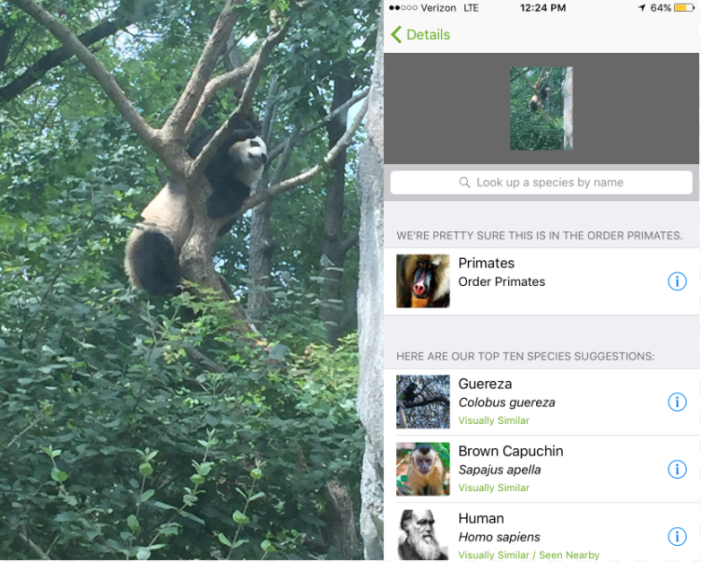 We Took New Animal-Identifying App iNaturalist to the Zoo