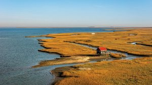 You'll Want to Explore These Hidden Barrier Islands Off the Mid-Atlantic Coast