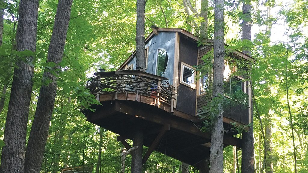 4 Epic Treehouses Near Dc You Can Rent For A Memorable Night