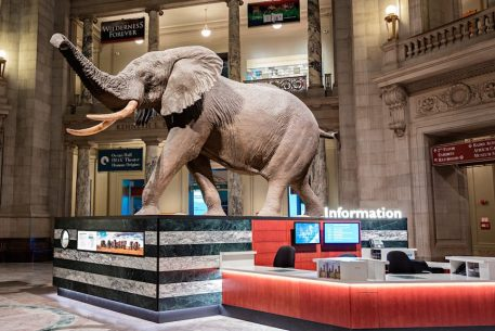 Filmmakers Hope to Pause a Plan to Scrap a Smithsonian IMAX for a Food Court