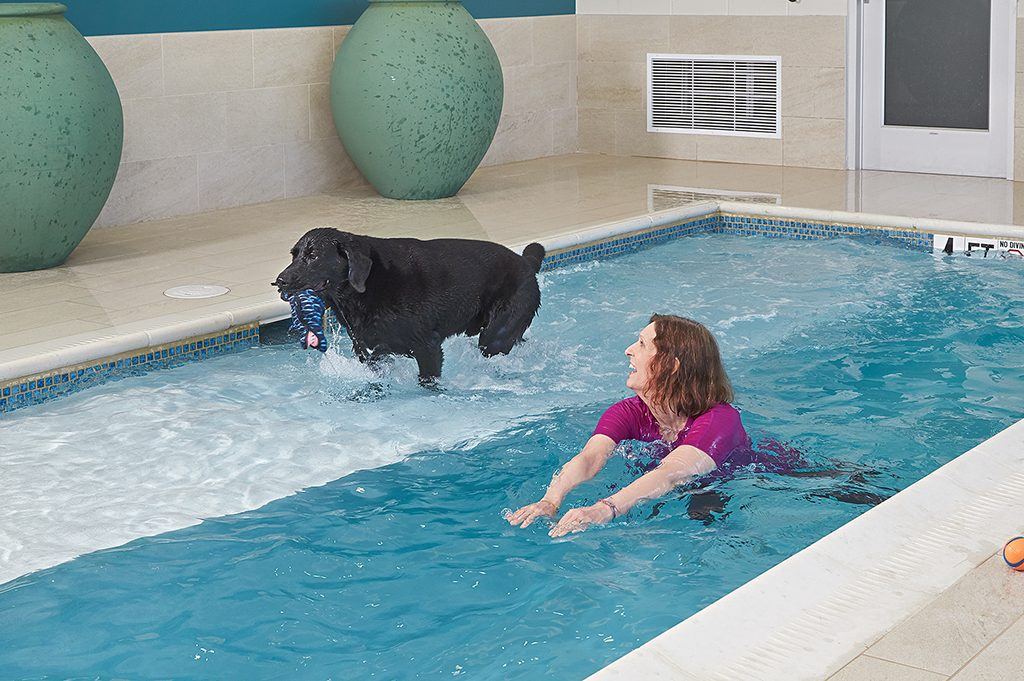 A swim with Grizz in the heated saltwater pool.