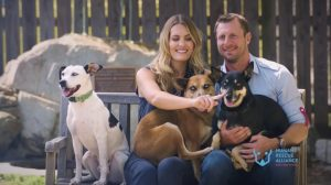 Nationals Pitcher Max Scherzer and His Wife, Erica, Will Cover Adoption Fees at Humane Rescue Alliance This Weekend
