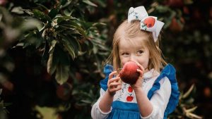5 Totally Gorgeous Apple Orchards Within a 3-Hour Drive From DC