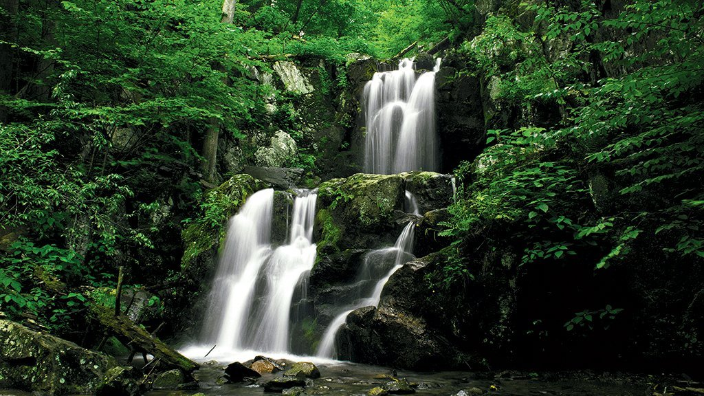 5 Great Hikes In Shenandoah National Park Washingtonian Dc