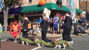 Things to Do in DC This Weekend (October 26-29): Pets in Costume, Pumpkin Painting, and The Blair Witch Project