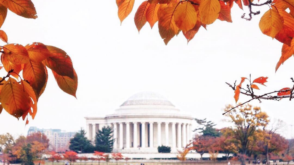 11 Spots Around DC to Take the Best Fall Foliage Photos