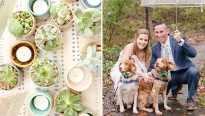Hang On To Your Pinterest Boards: This Wedding Has Cute Dogs, Succulents, and DIY Everything