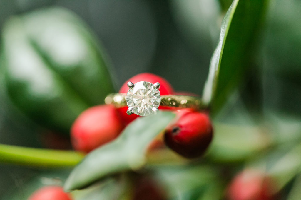 Claire Shiao + Paul Eleshewich | Xmas Engagement Anny Photography_AL6B2461