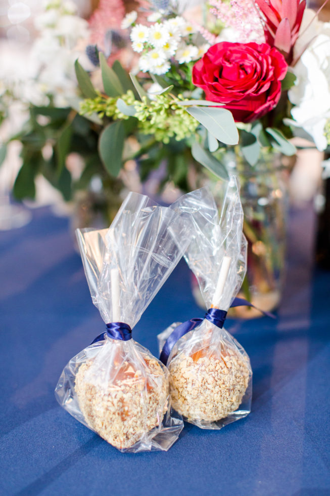 barns-hamilton-station-vineyard-wanka-wedding-reception-details-bethanne-arthur-photography-photos-40