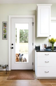 Look Inside Two Washington Houses Designed for Dogs
