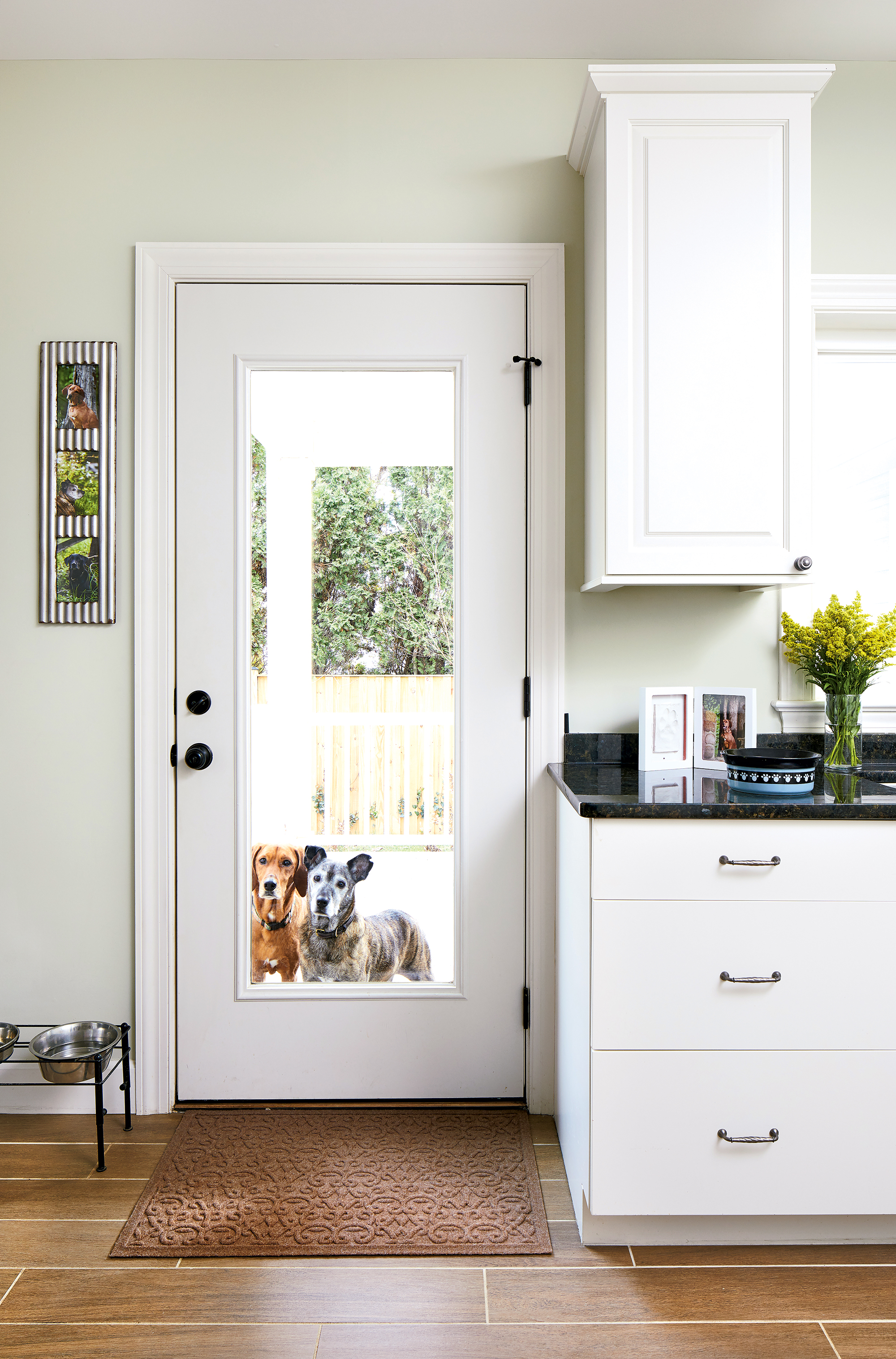 Take a look at this dog-centric Falls Church home, plus other pet-friendly design ideas. Photograph by Stacy Zarin Goldberg.