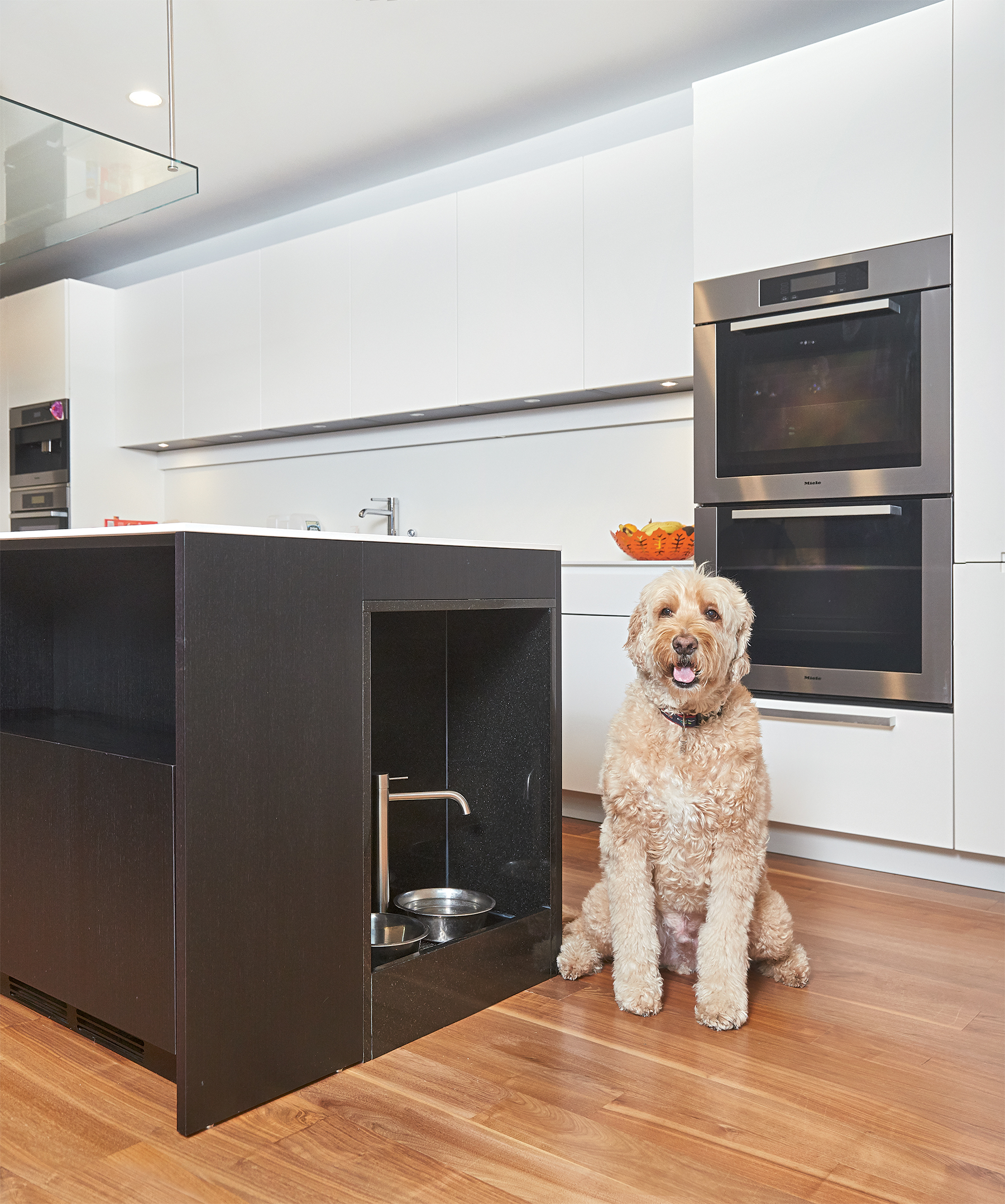 Architect Robert Gurney and the Italian design firm Boffi designed this custom eating and drinking station for Sawyer, a goldendoodle. Its interior is lined with black granite. Photograph by Jeff Elkins.