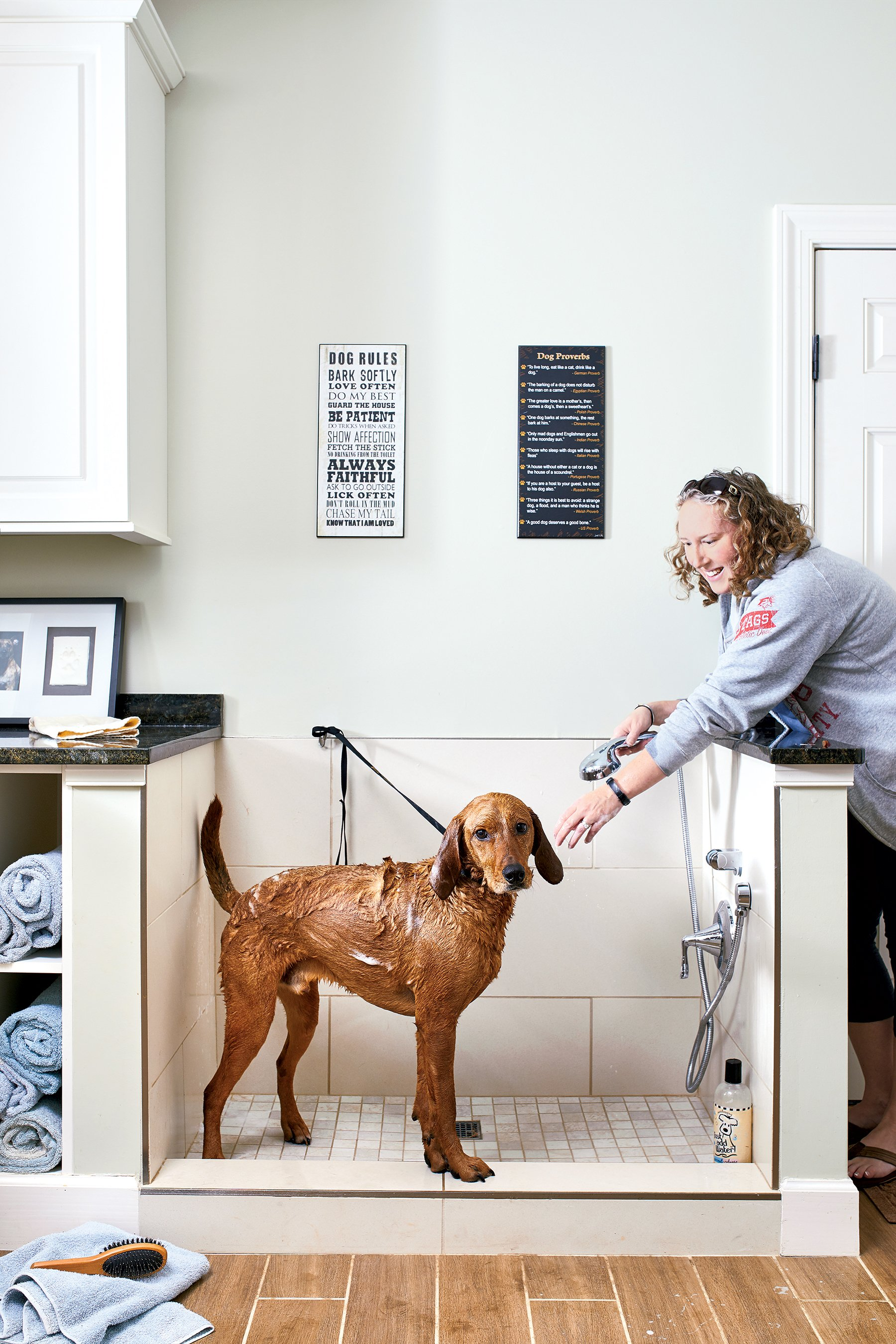 Rooms Designed For Dogs: Look Inside Two Washington Houses Designed For Dogs