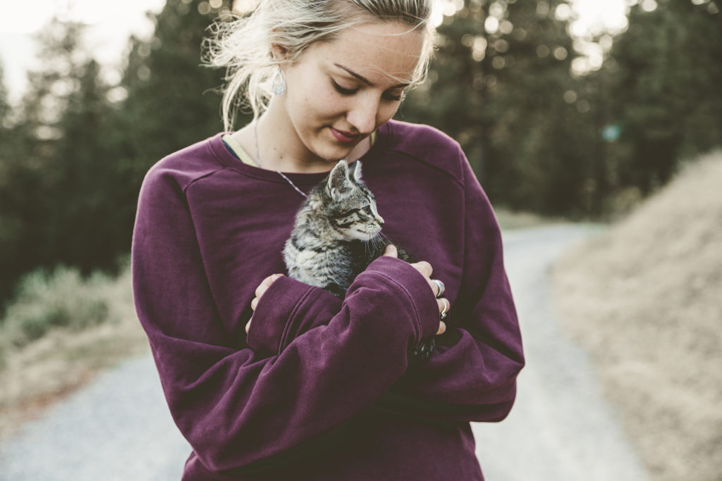 Who doesn't love cuddling a warm kitten? Photograph by Japheth Mast via Unsplash.