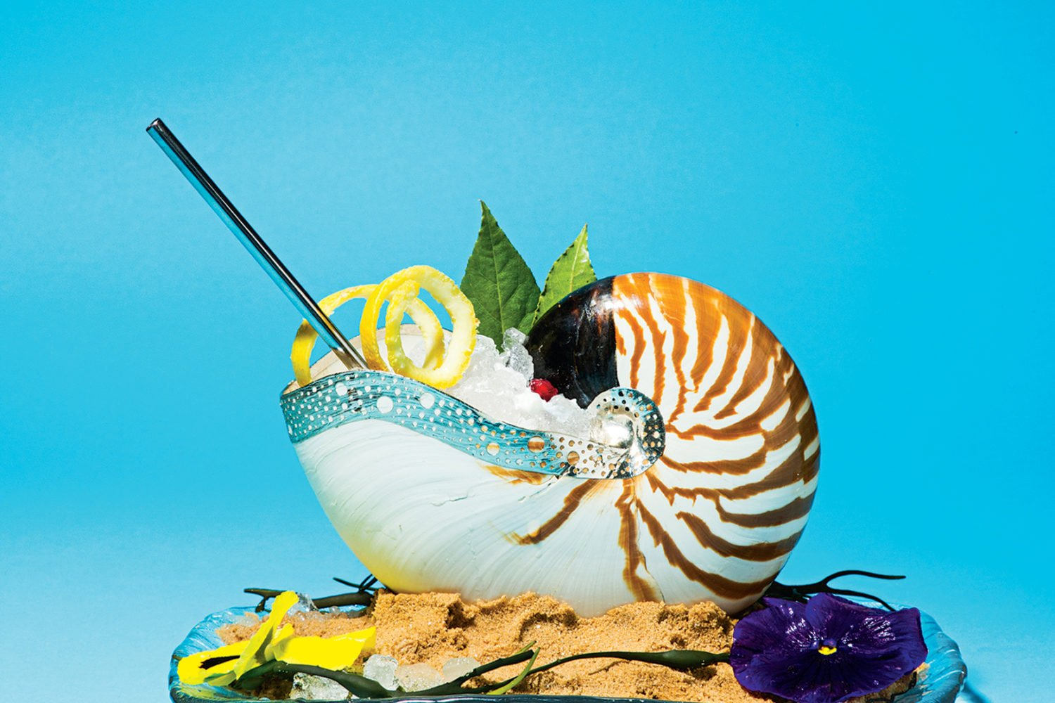 Tiger nautilus shell in a bed of sand for gin-and-tonics at Del Mar. Photograph by Scott Suchman.
