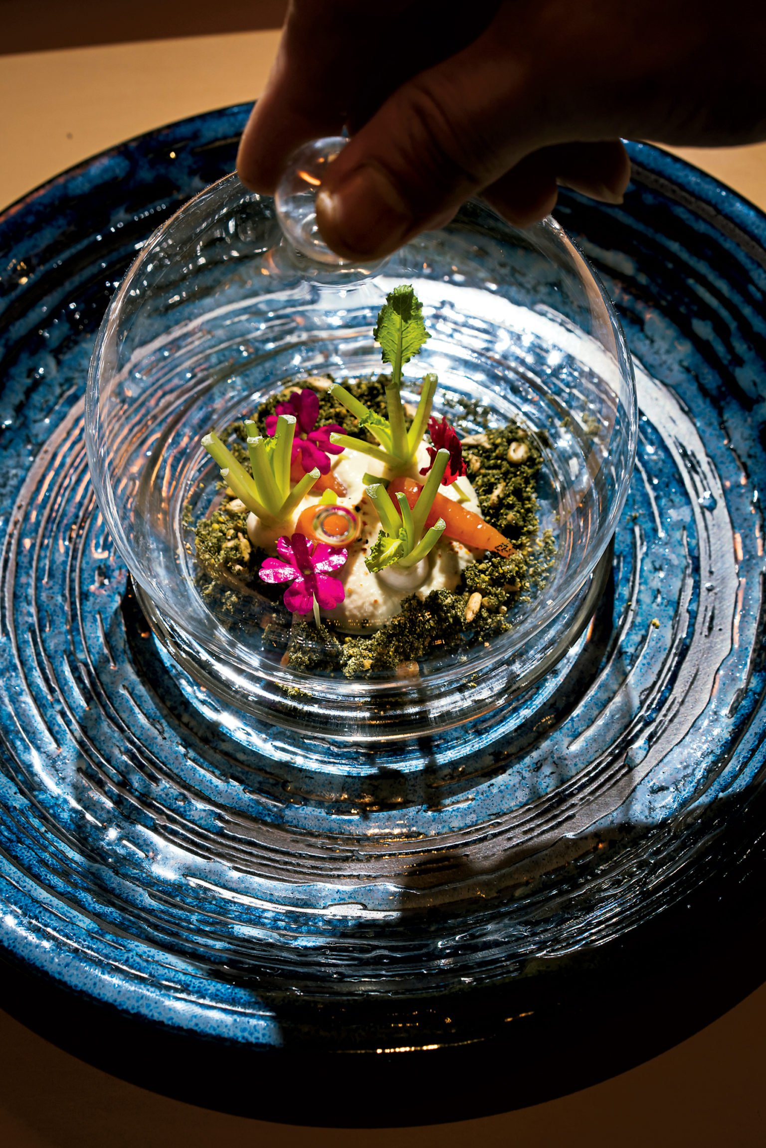 """A terrarium salad consists of a seaweed and sunflower """"soil,"""" black-edamame purée, and baby turnips and carrots."""
