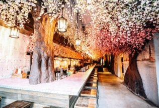 DC's Cherry Blossom Pop-Up Bar Is Back With More Flowers and a 10-Foot Godzilla Robot