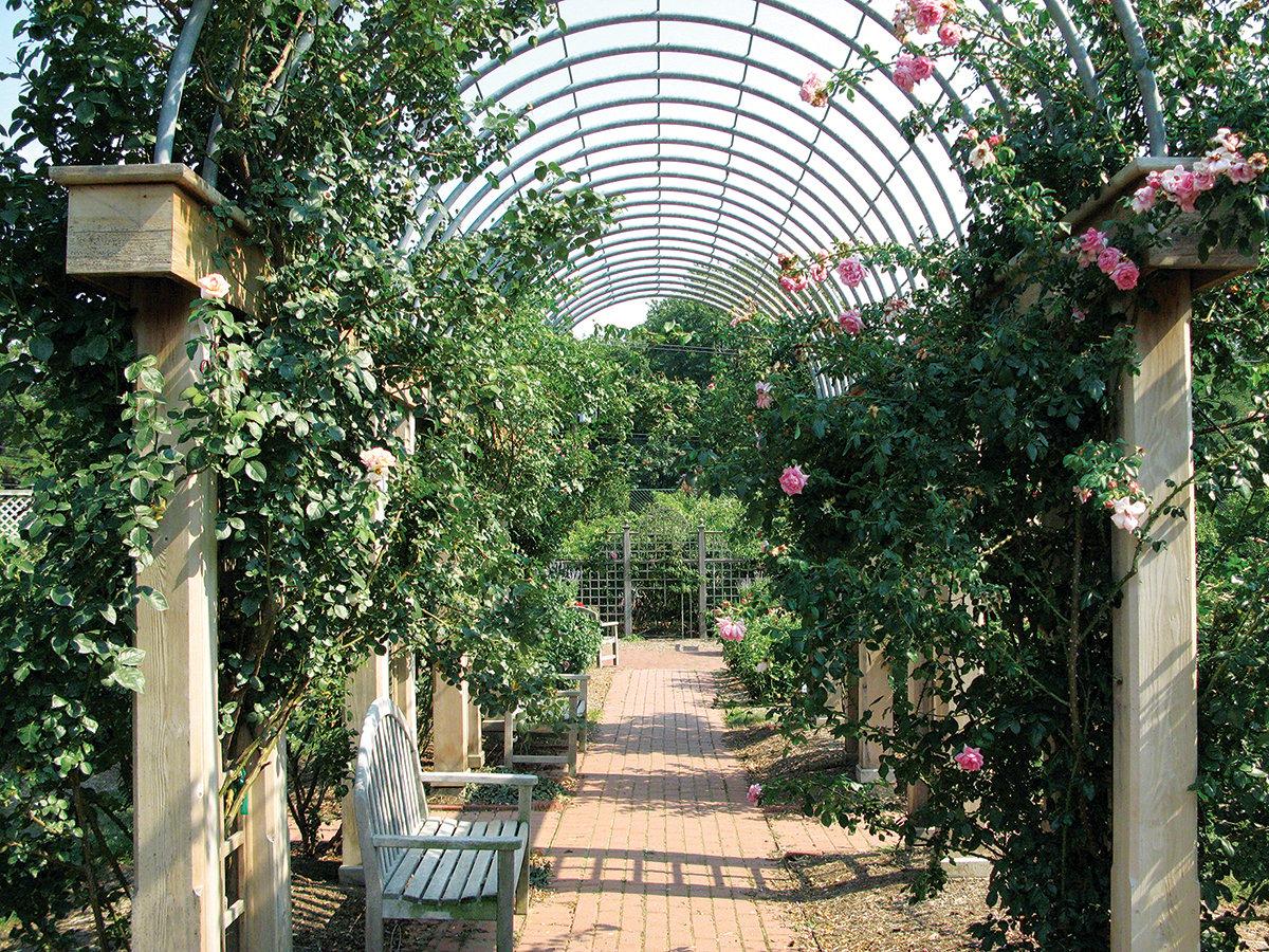 Bon Air Memorial Rose Garden
