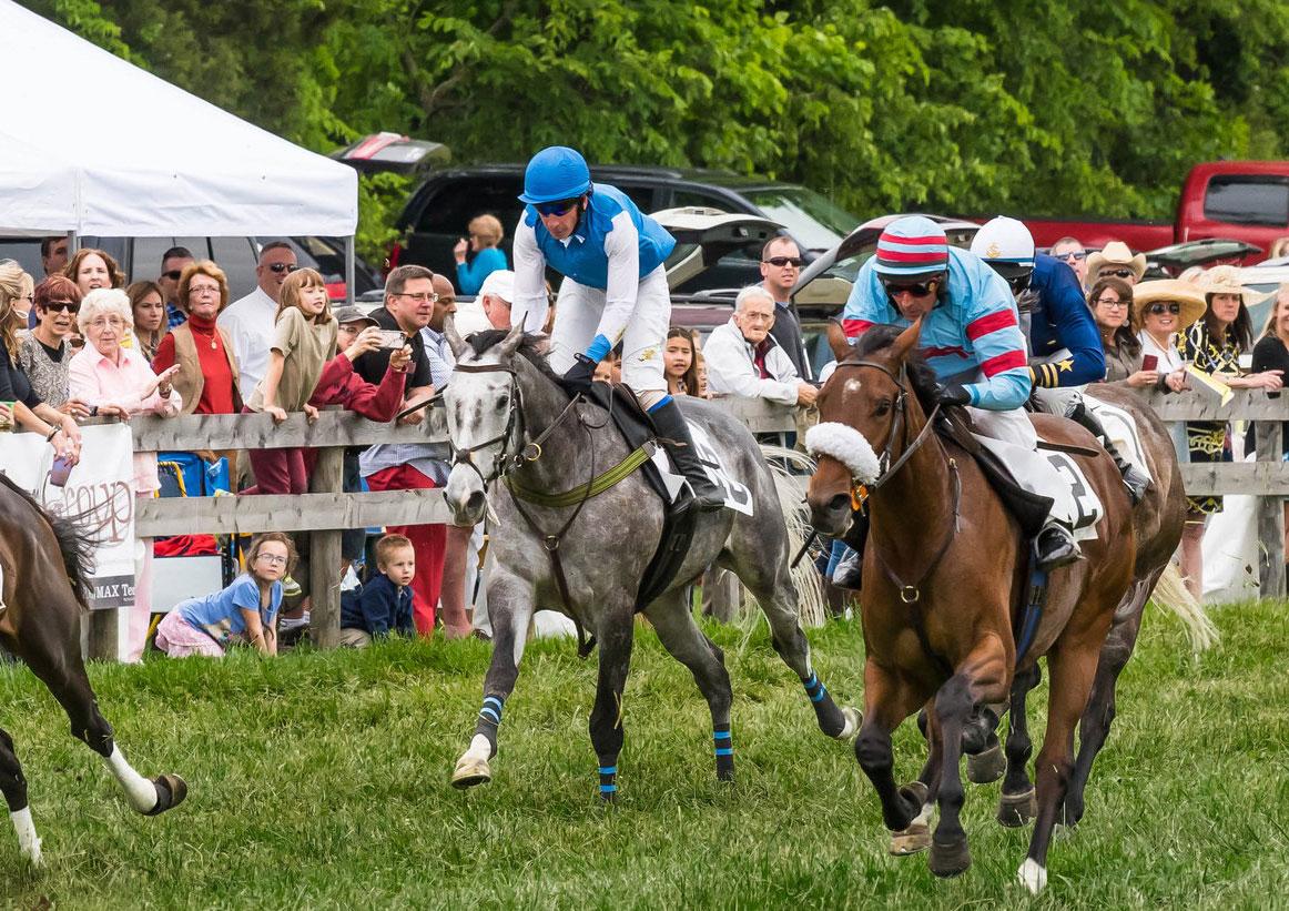 Potomac Hunt Races