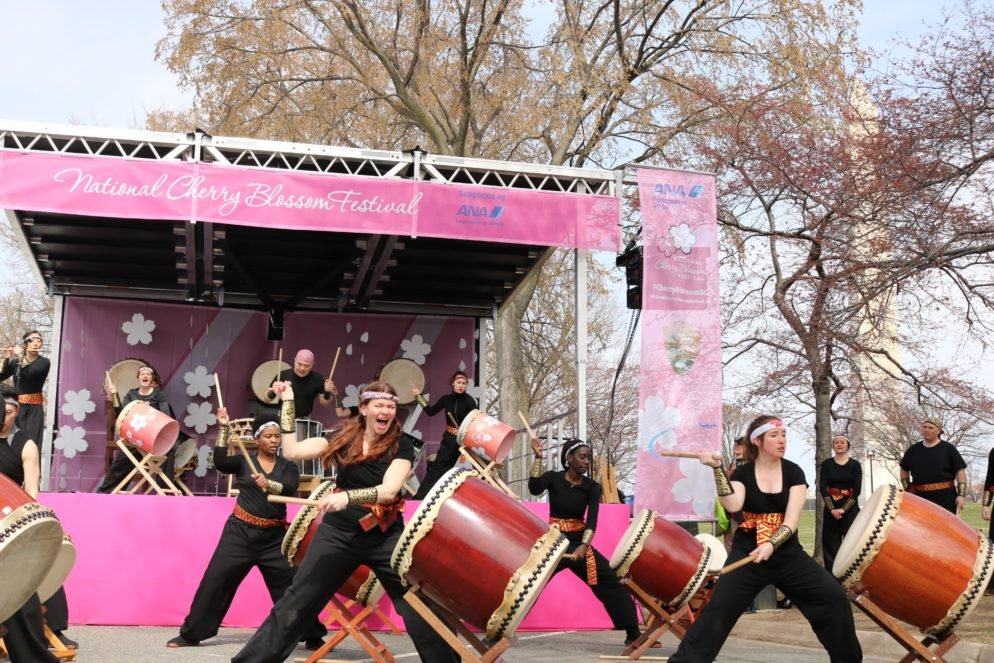 See What Bloomed at the 2018 National Cherry Blossom Festival