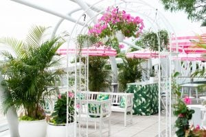 Whaley's Rosé Garden Is Back With Rum-Filled Coconuts and Nasturtium Leaf Tacos