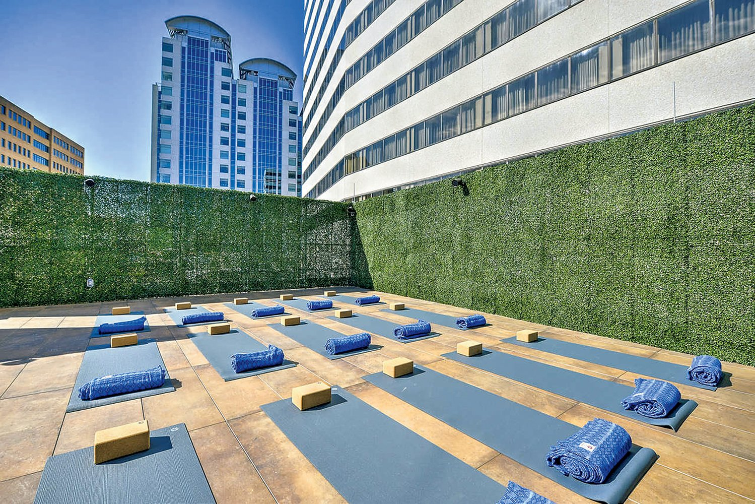 Rooftop yoga at Truebody. Truebody photograph courtesy of Truebody.
