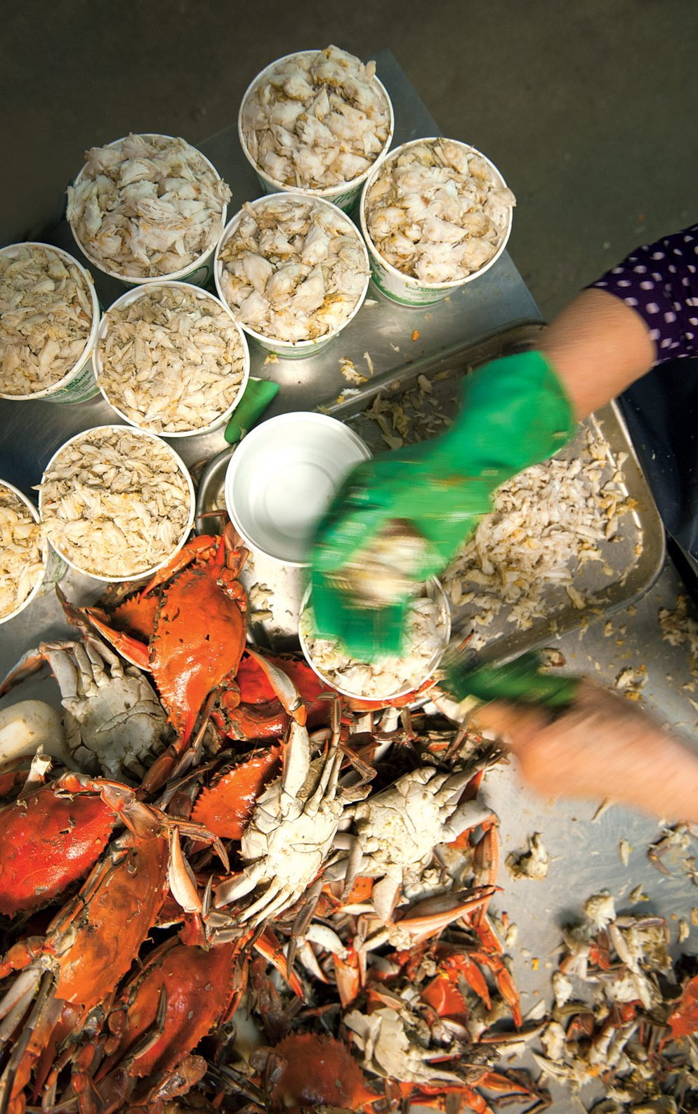 Looking for Packaged Blue Crab? It'll Cost You