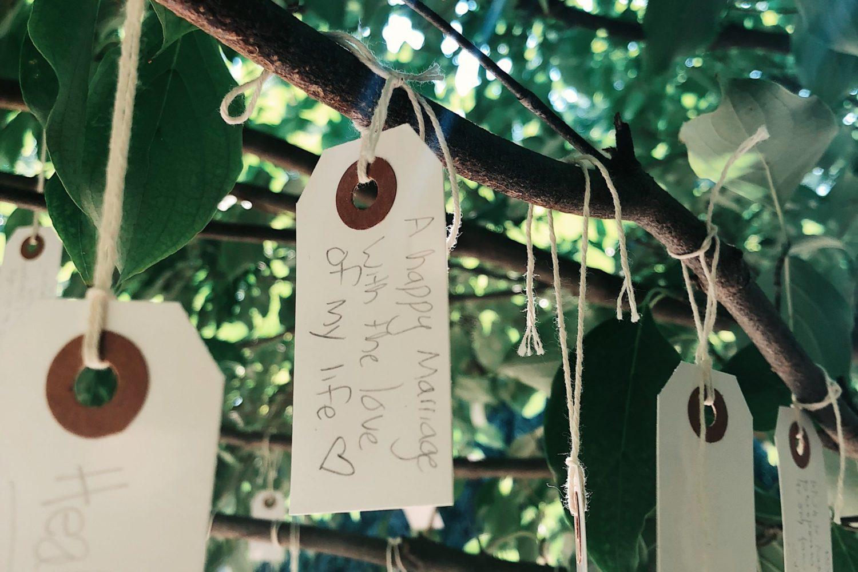 Hirshhorn Wish Tree
