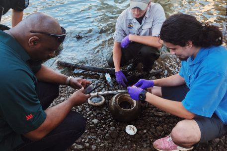 Mussels Could Help Make the Anacostia Safe for Swimming