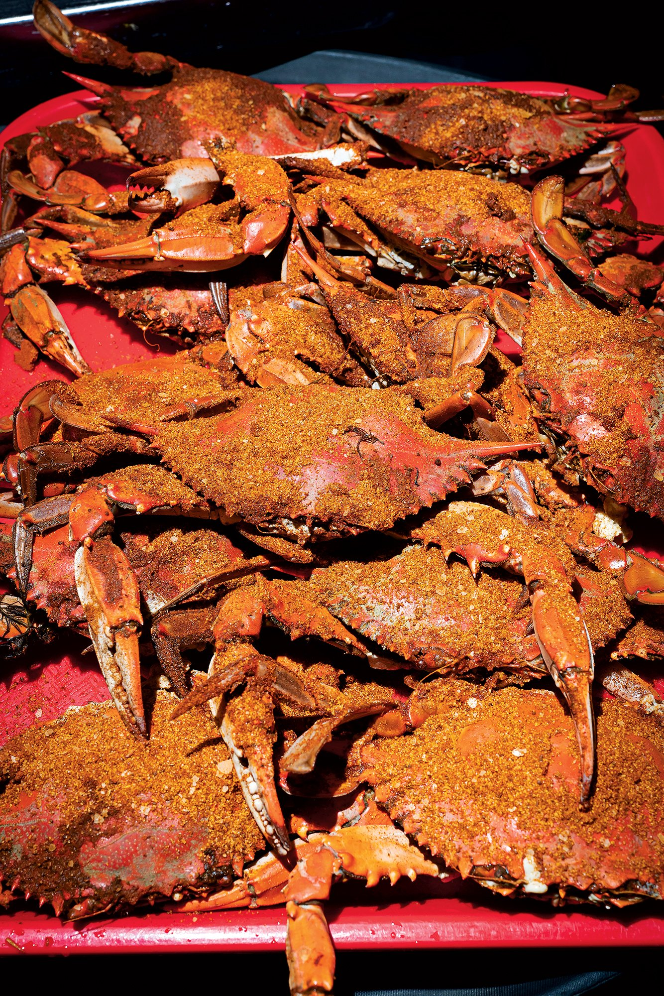 Crabs at the Point.