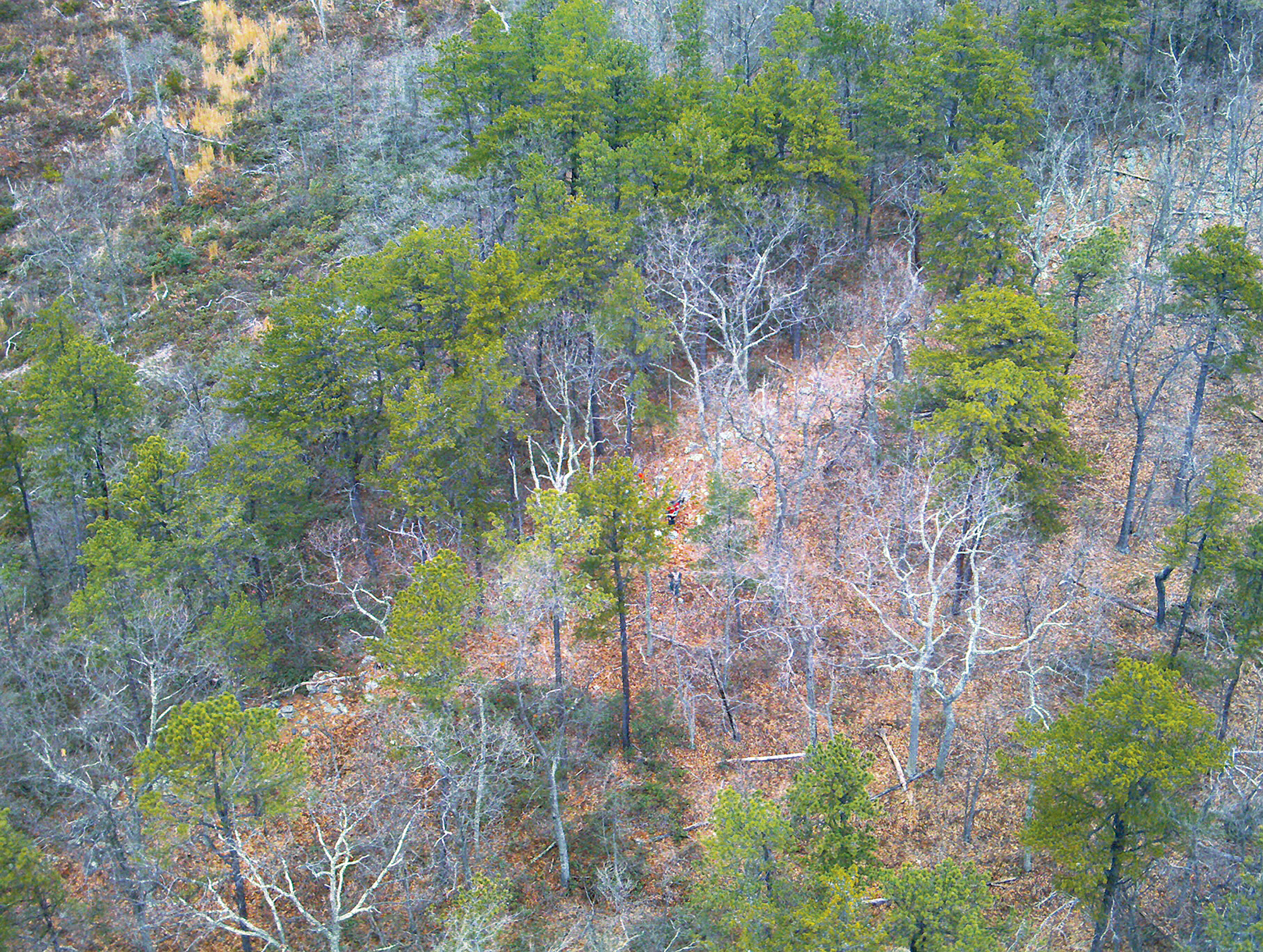 McDonnell spent a frigid night in the forest before the search-and-rescue drone from the Loudoun County Sheriff's Office—flying its first mission—found him. Here, an image from the operation. Photograph courtesy of Loudoun County Sheriff's Office.