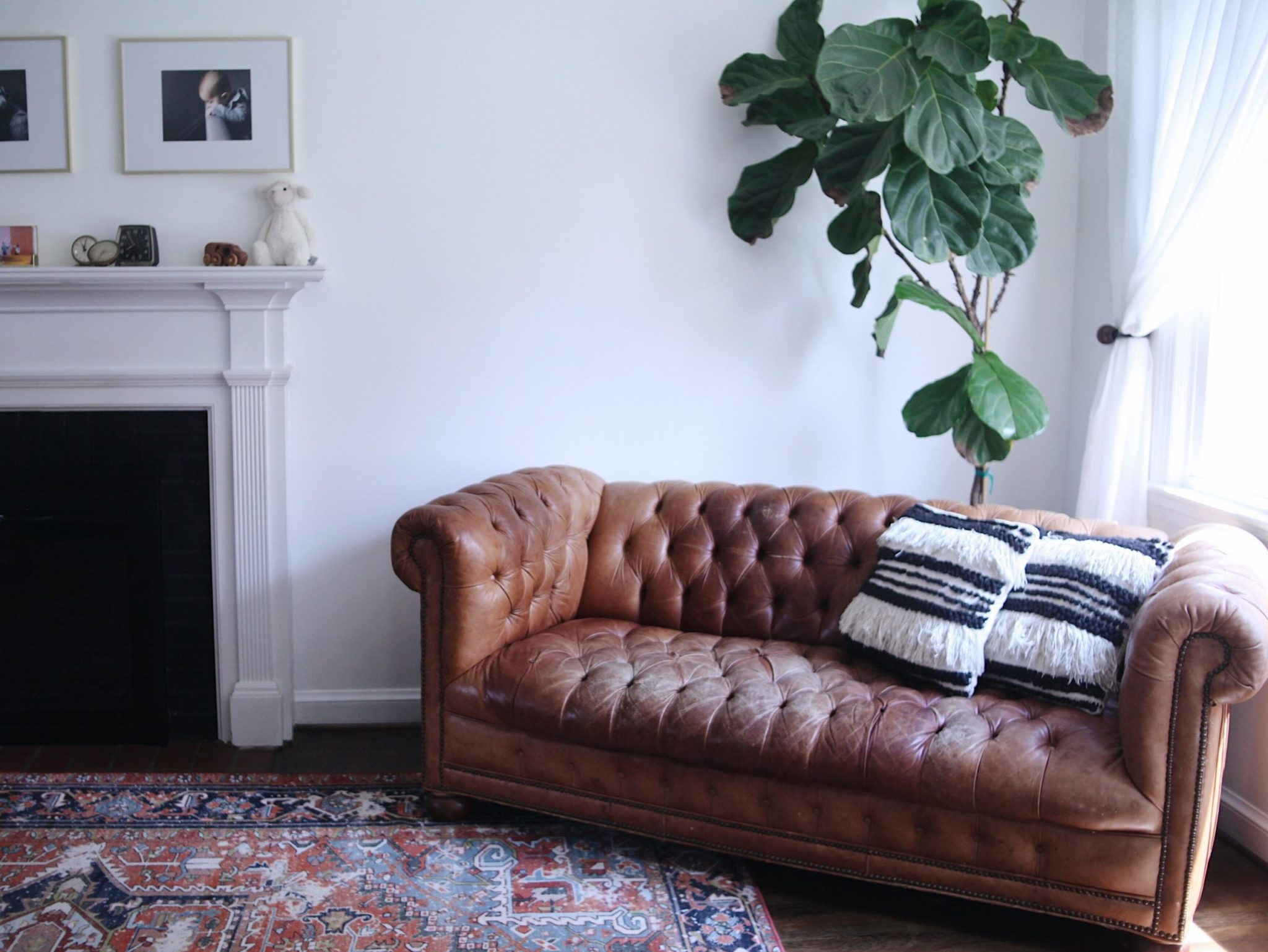 Look Inside My Home: An Eclectic, Memento-Filled Home in Silver Spring