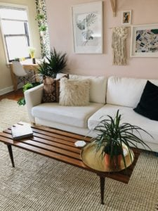 Look Inside My Home: A Plant Lover's Oasis in Trinidad