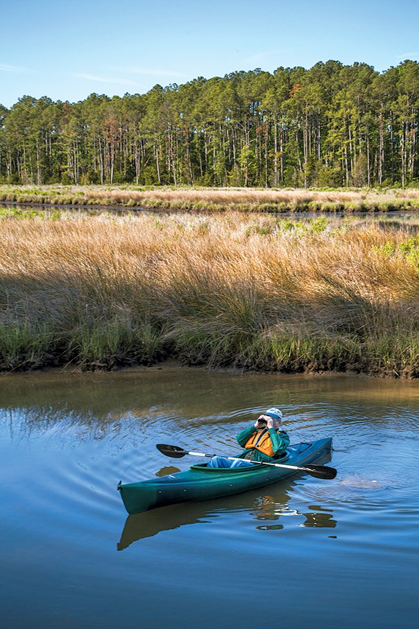 On a new sunrise kayak tour, you might catch glimpses of bald eagles and red-tailed hawks. Photograph of canoe by Virginia Tourism Corporation.