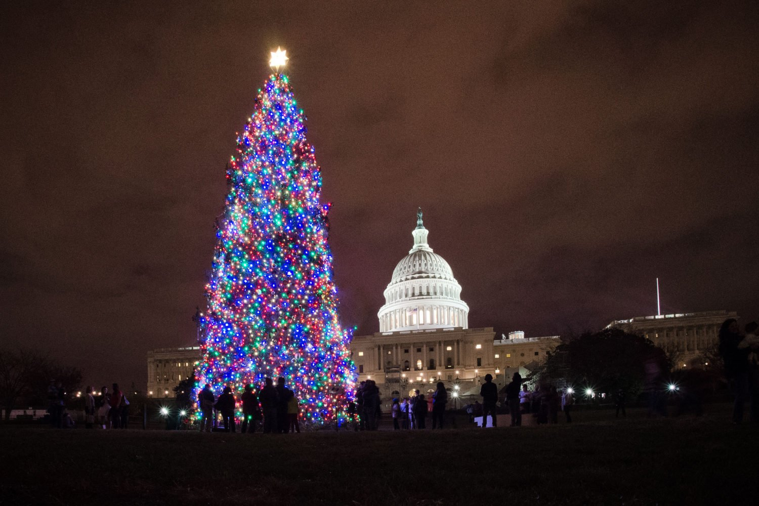 Have the Happiest Holiday in Washington with Hilton