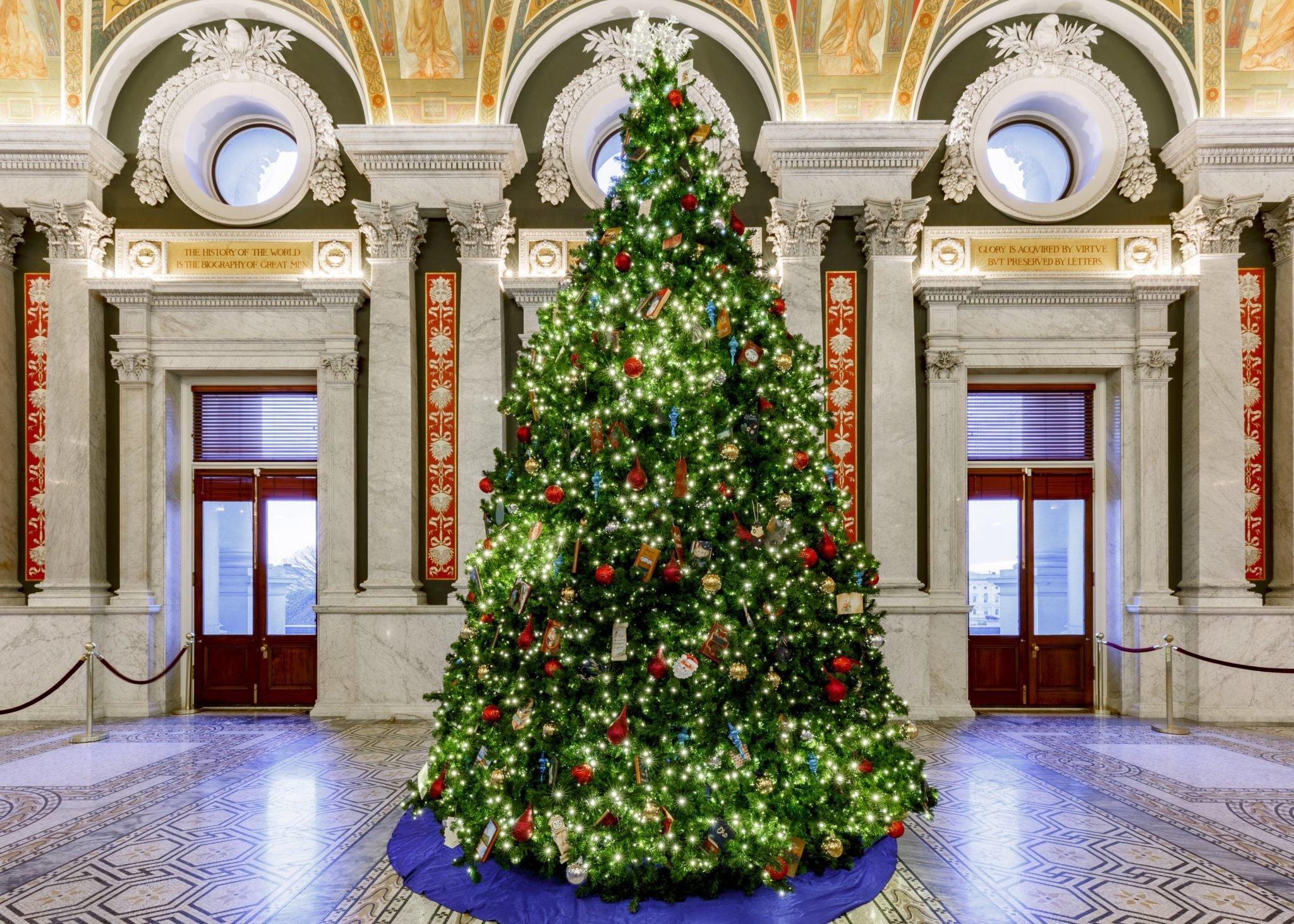 DC Christmas Trees, Ranked | Washingtonian (DC)