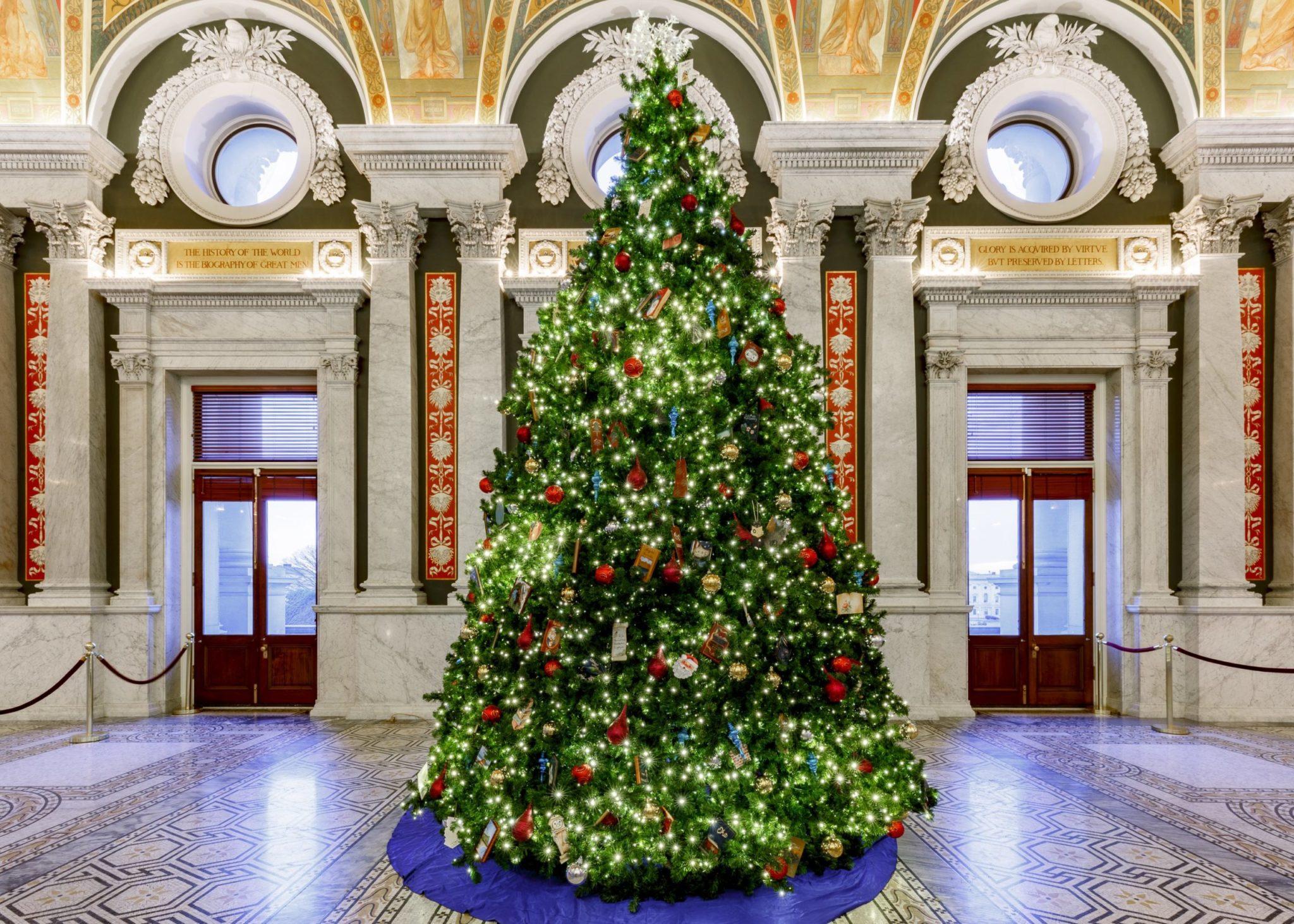 DC Christmas Trees, Ranked