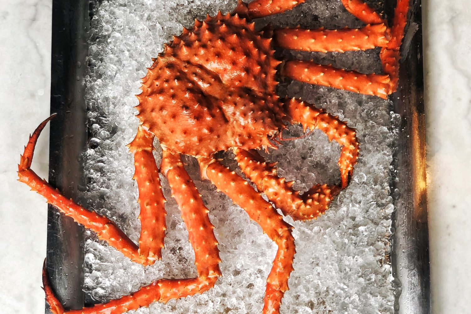 Crab is on the menu for RPM Italian's feast. Photograph by Anthony Colucci.