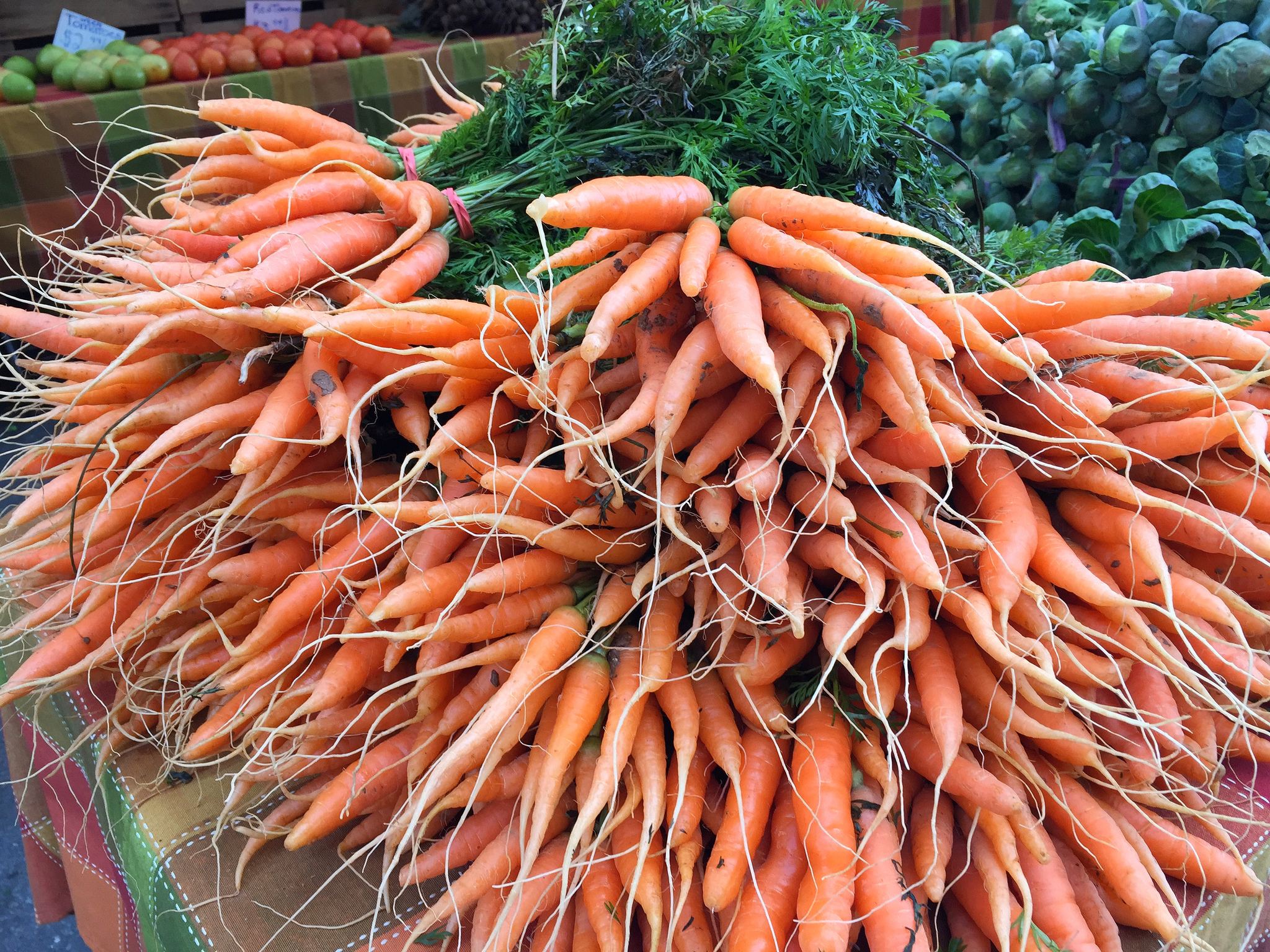 "Carrots at Silver Spring's FreshFarm Market. Photograph via Flickr user <a href=""https://www.flickr.com/photos/afagen/38093188354"">Adam Fagen</a>."
