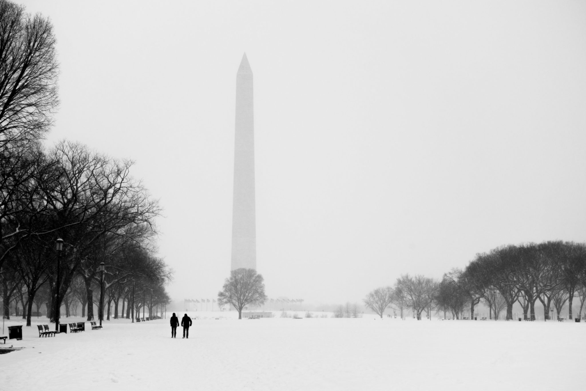 Washington, DC, snow. Photograph via iStock.
